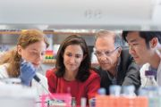 Cancer Immunotherapy Research